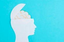 7 dicas para melhorar a memória